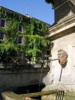 Fontaine à Rognes