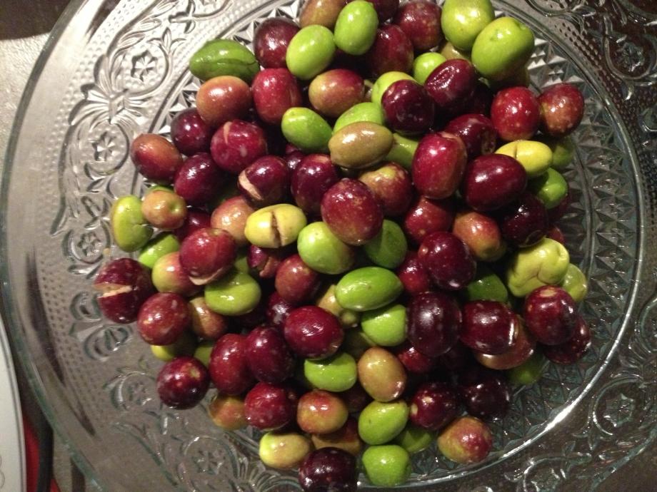 olives cassées 2